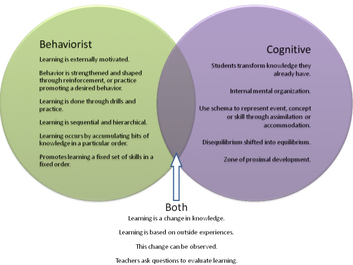 Behaviorist theory education essay